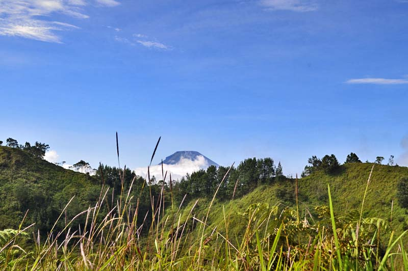 Gunung Sindoro dilihat dari Pakuwaja