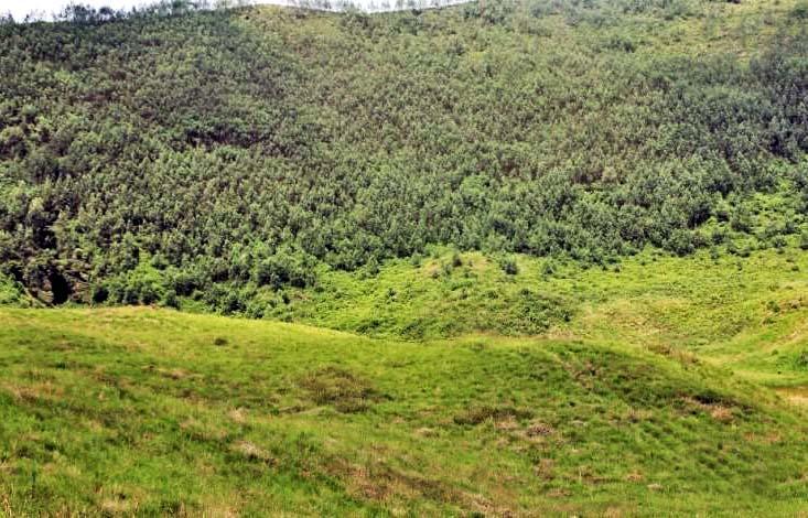 Image result for lembah semurup dieng